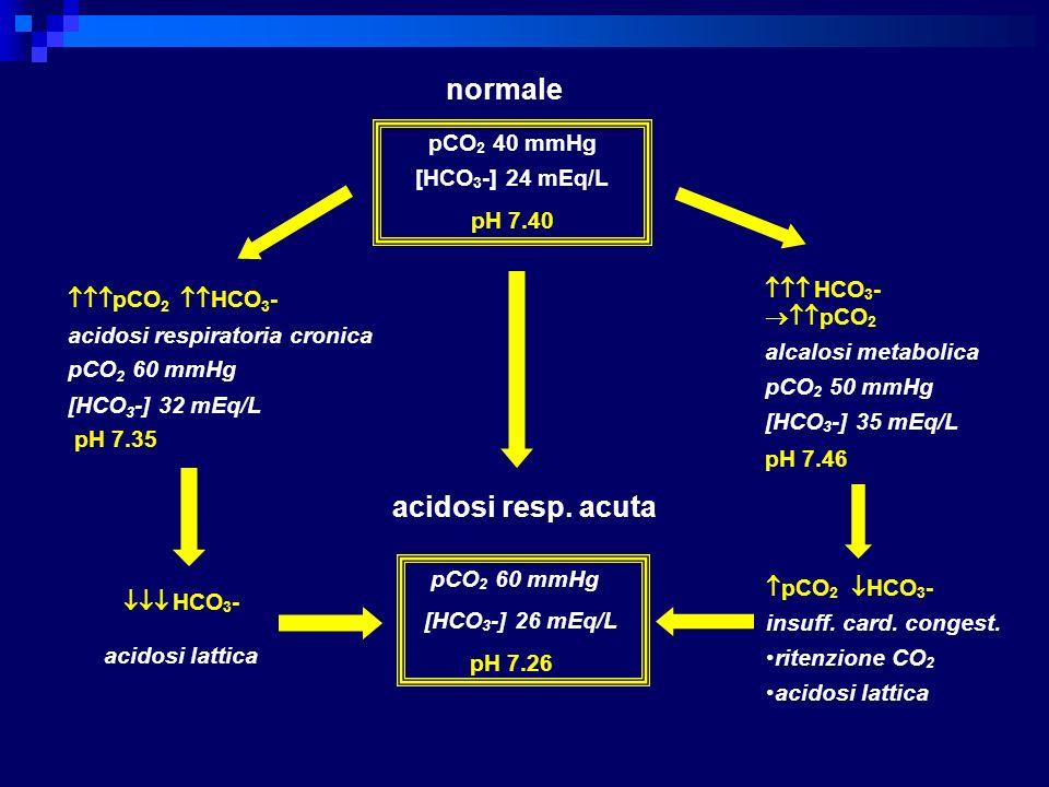 normale pCO2 40 mmHg [HCO3-] 24 mEq/L pH 7.40  HCO3- pCO2